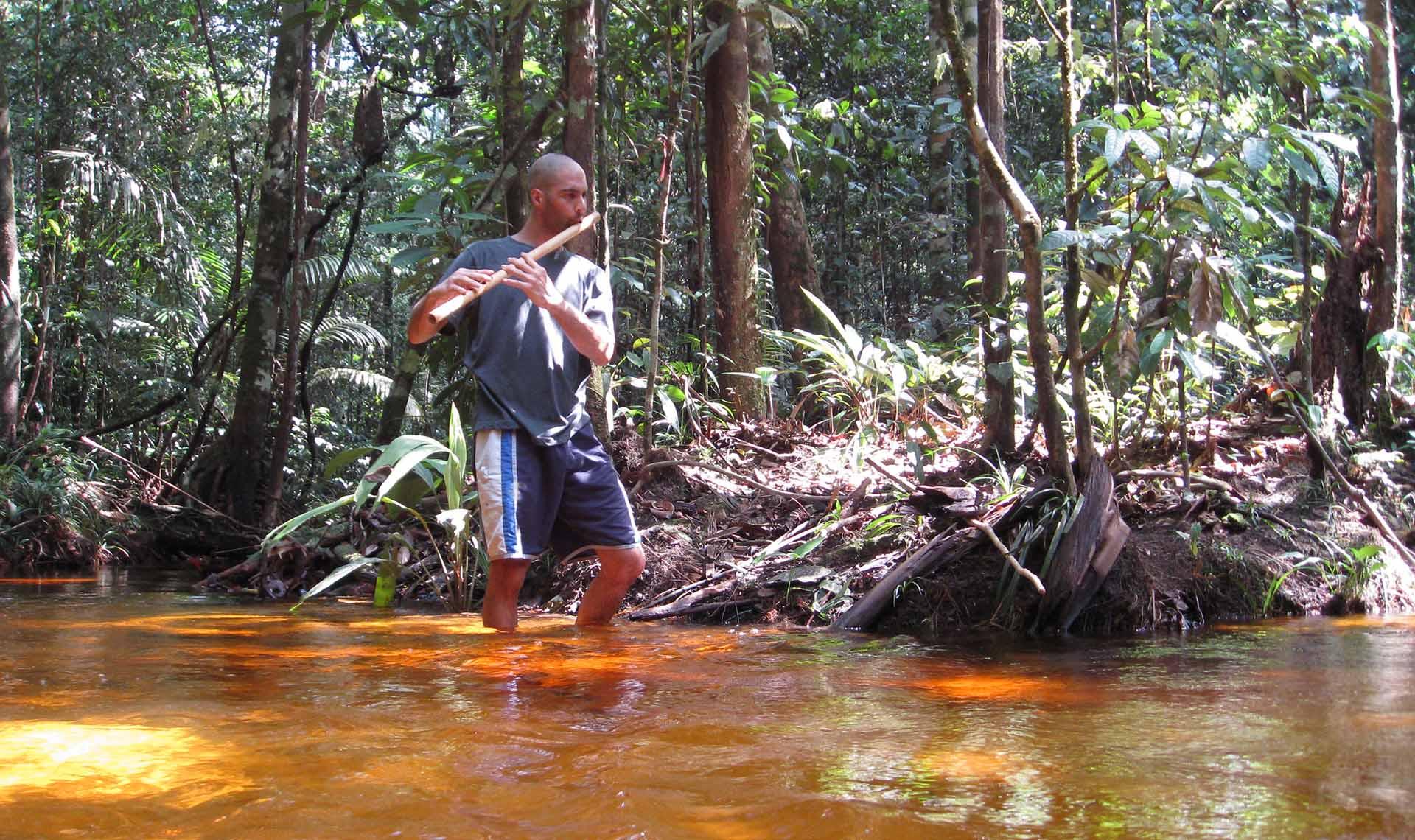 Bamboo Flute Rainforest