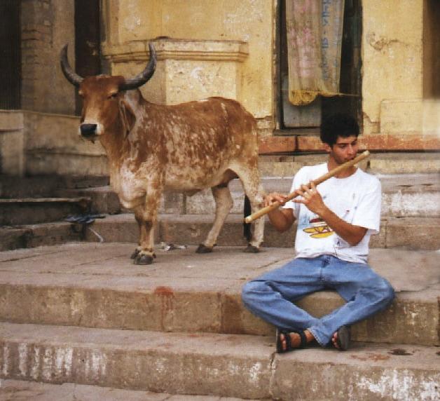 India 1997 Varanasi - Kerry Kriger bamboo flute